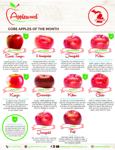 12 Month Apple Planner